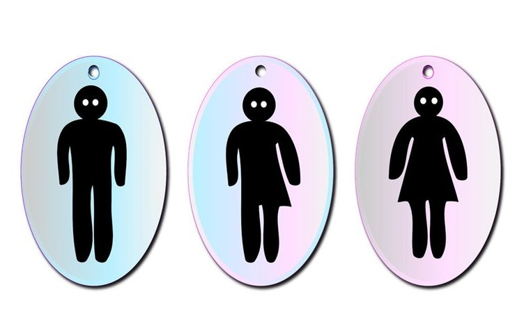 Transvestite bathroom symbol