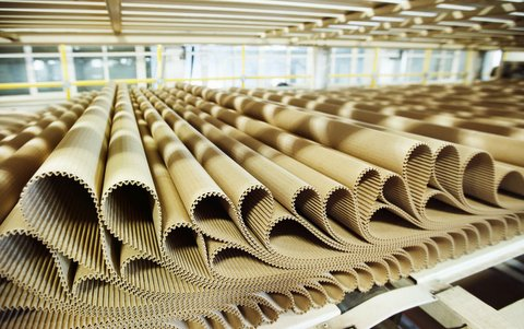 43854945 - closeup image of pleat cardboard row at factory background.