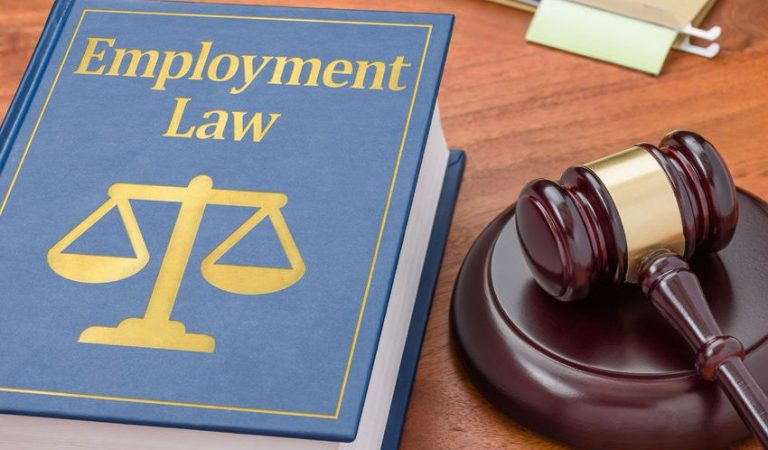 71709032 - a law book with a gavel - employment law